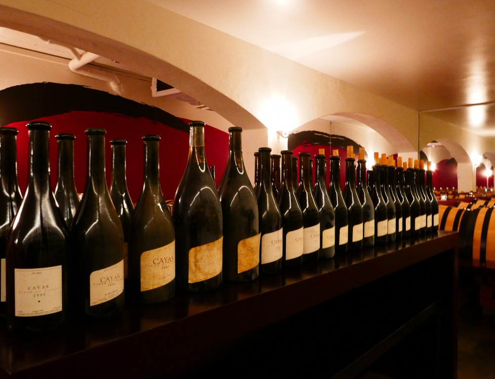 Unterschätztes Weinland, die Schweiz. Teil I Von der Sonne verwöhnt, Reben im Wallis
